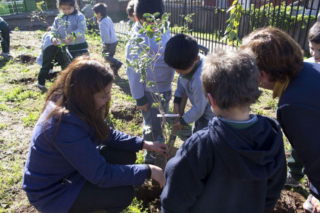 Baumprojekt-Escuela-Valle-de-Narau