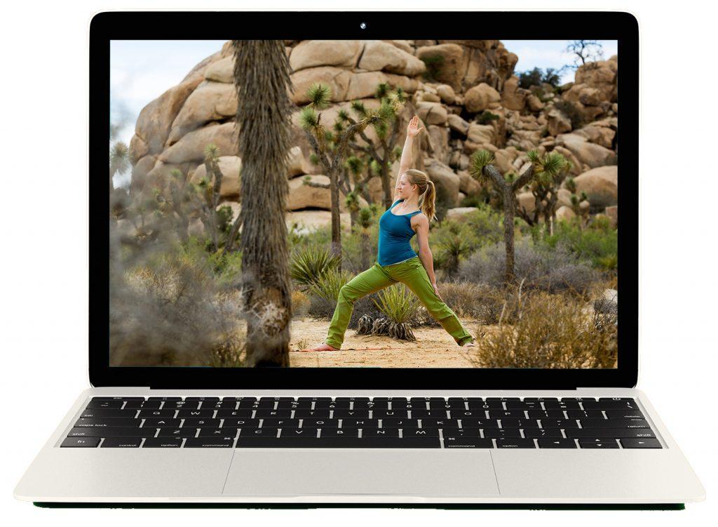 notebook-white-yoga-joshua-tree